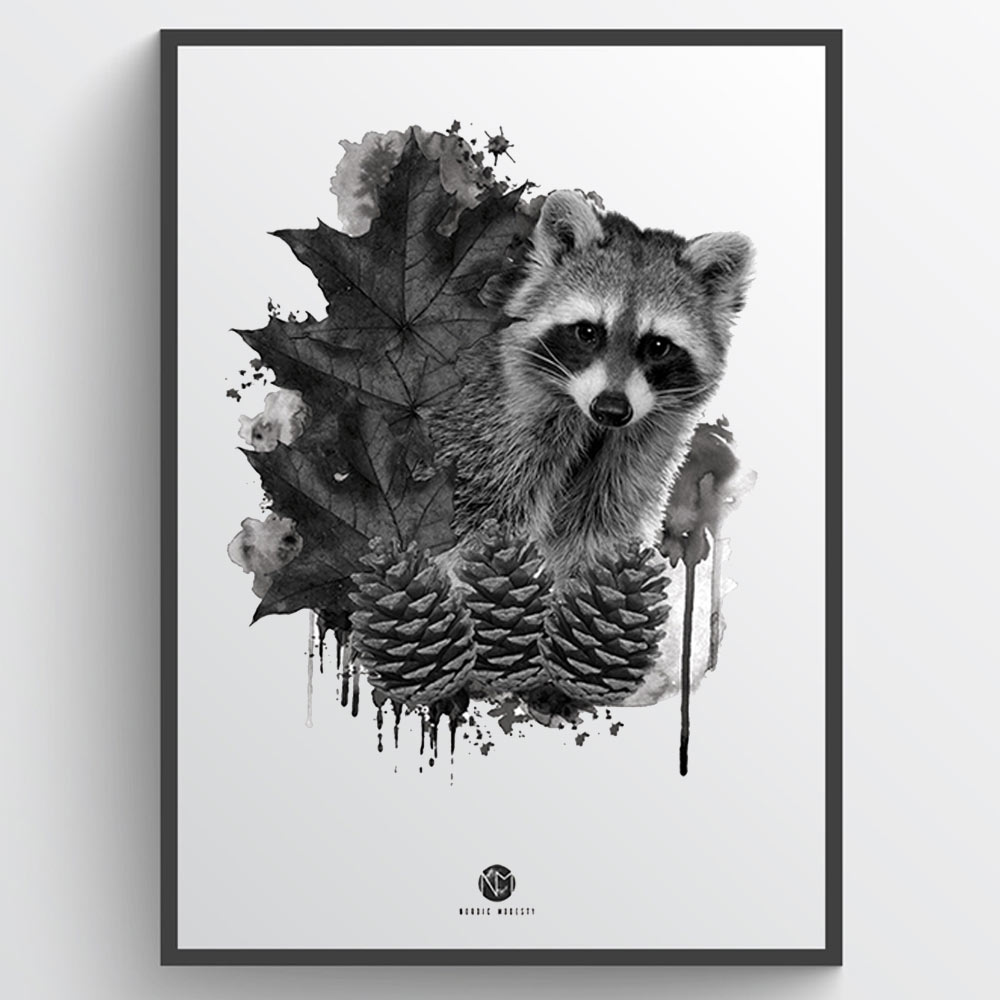 Image of   Forest racoon - plakat