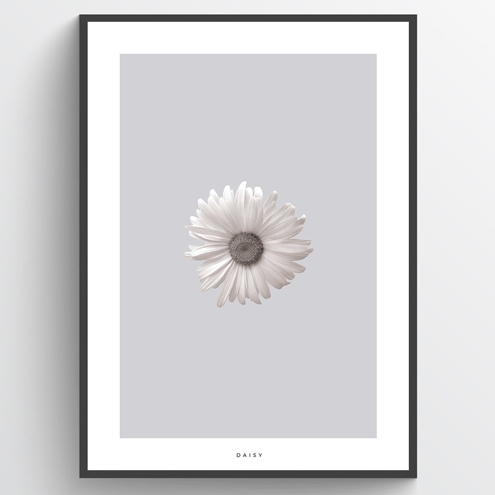Marguerit #2 - plakat wallsticker