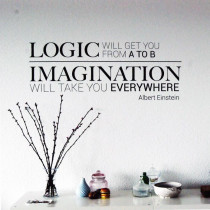 Logic & imagination