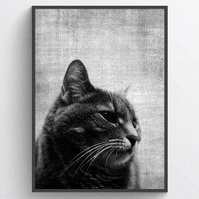 Texture Cat - plakat wallsticker