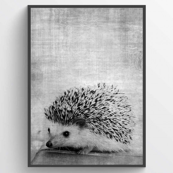 Texture hedgehog plakat wallsticker
