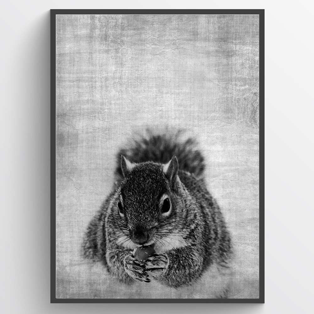 Texture squirrel - plakat wallsticker