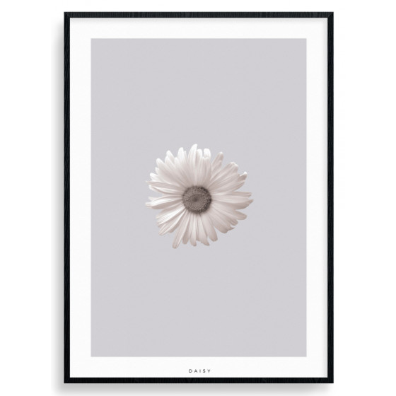 #2 Marguerit plakat wallsticker