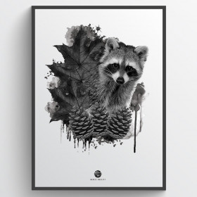 Forest racoon - plakat wallsticker